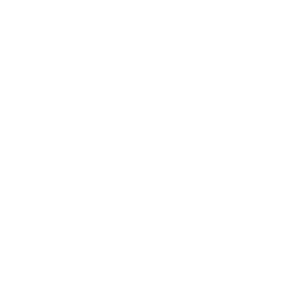 android_pay_icon_lg_white