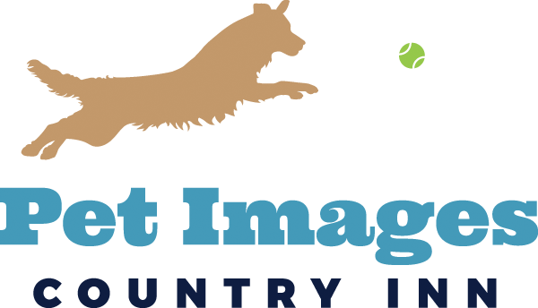 Pet Images Country Inn | Boarding, Grooming & Daycare | MN