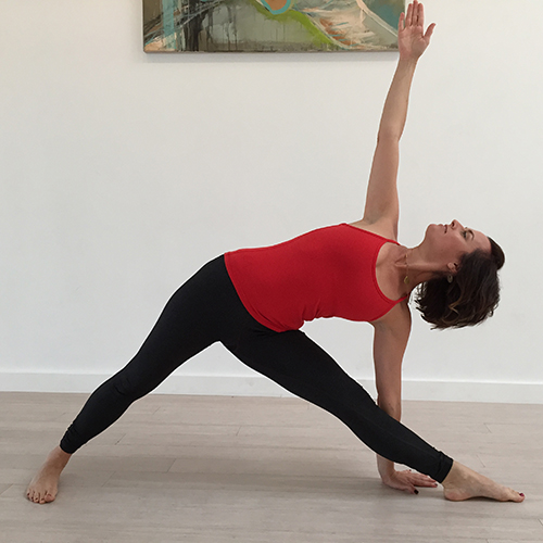 Hatha Yoga Level 1: Yoga Fundamentals at Spectra Yoga