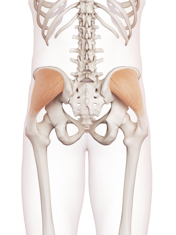 SymFit Healthy Hip Program - Treating Hip Pain